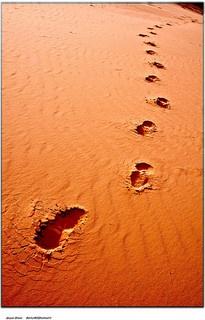 Footsteps desert